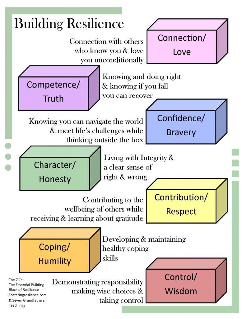 info sheet resilience 2