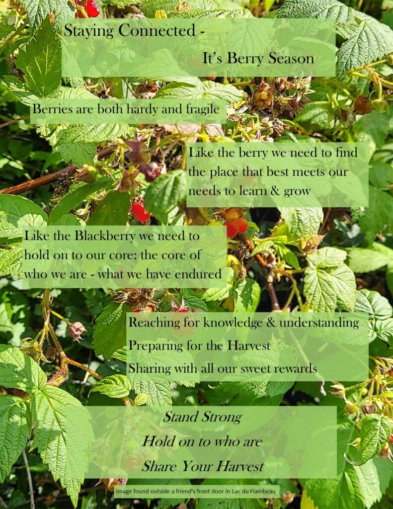 fact sheet - berry time 2